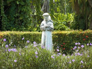 st francis of assisi pic